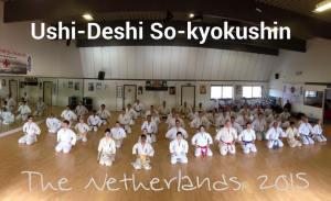 ushidesi 2015 no 4